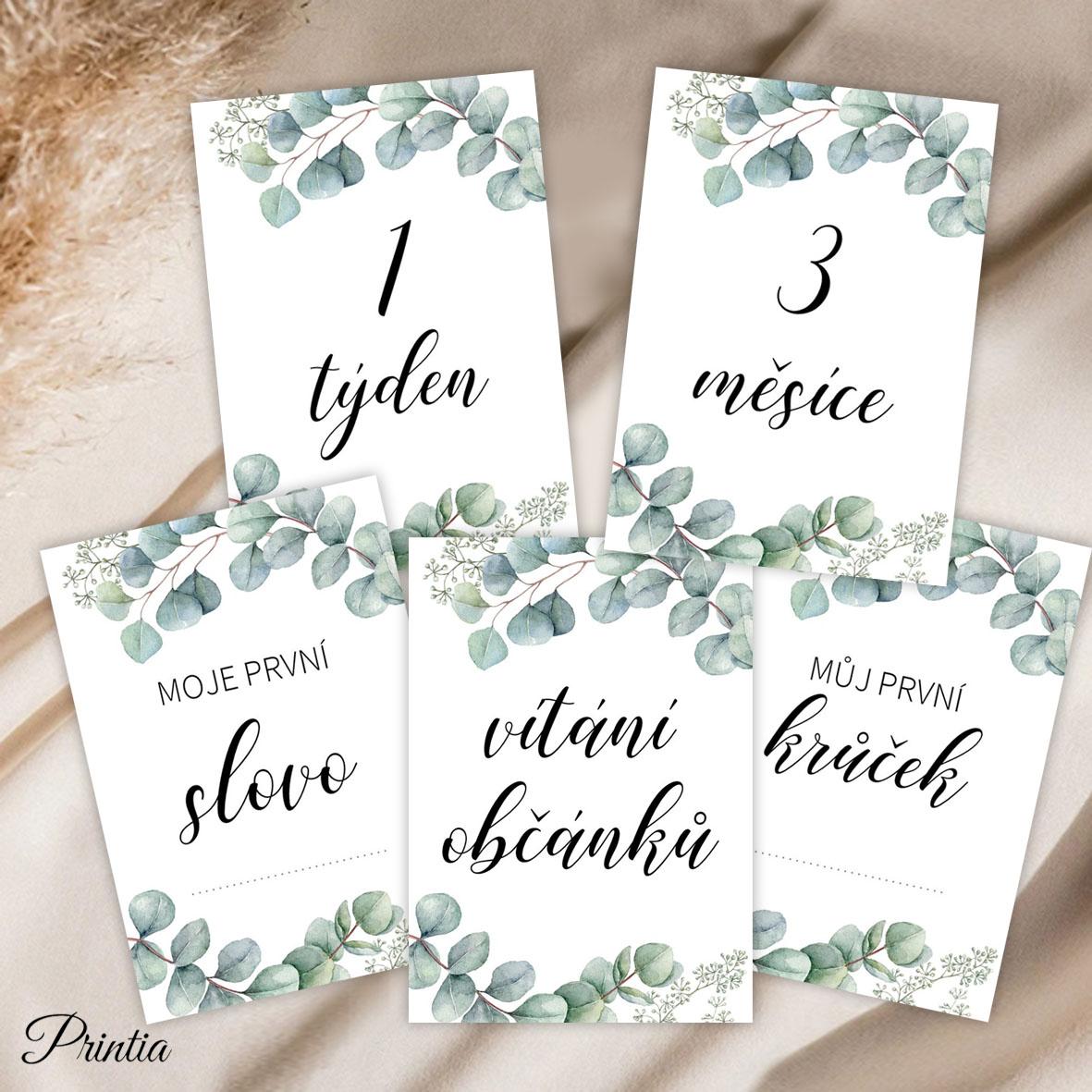 Milníkové kartičky pro miminka s eukalyptem